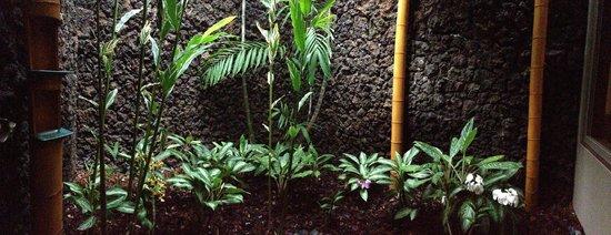 Four Seasons Resort Hualalai: Lava Shower