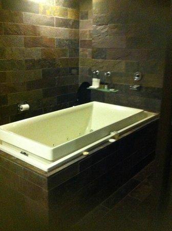 Executive Hotel Cosmopolitan: Tub
