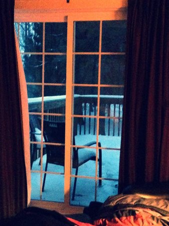 Goldberry Woods Bed & Breakfast Cottages : View outside our sliding glass door