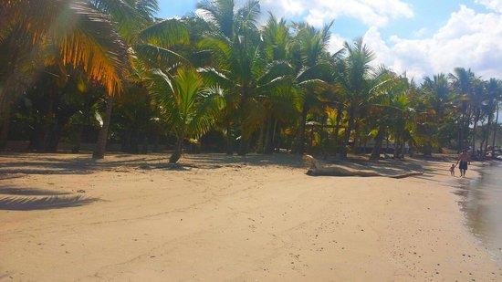 ClubHotel Riu Merengue: A little cove we found... beautiful