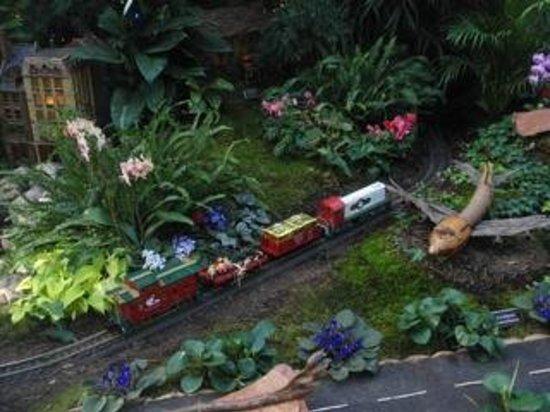 A Trestle Made Out Of Sticks Picture Of New York Botanical Garden Bronx Tripadvisor