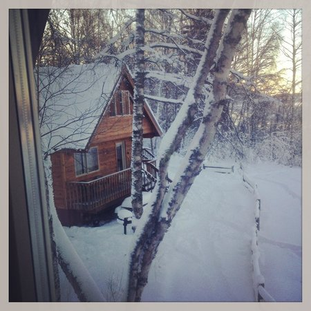 Susitna River Lodging: view out window from upstairs loft