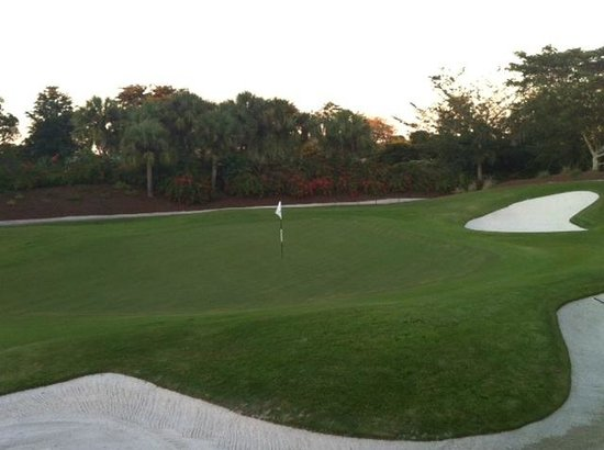 LaPlaya Golf Course: No. 5 green