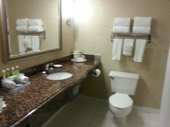 Holiday Inn Express Sea World: bathroom