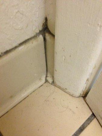 Days Inn Kissimmee FL: limpeza do banheiro