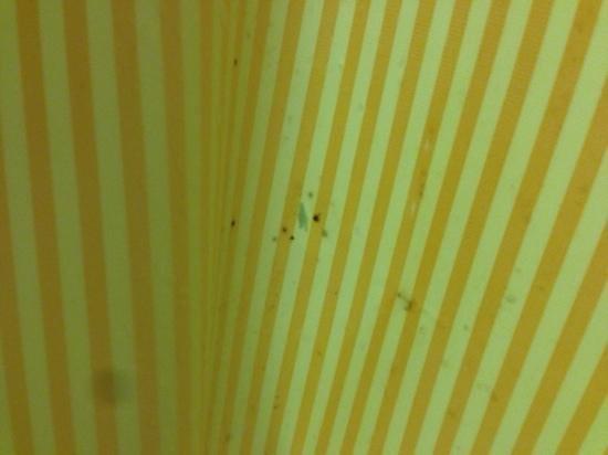 Days Inn Kissimmee FL: limpeza da cortina do banheiro