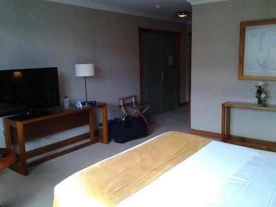 Hotel Rey Don Felipe: nice flat screen tv