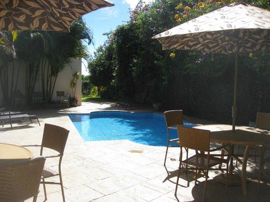 Hotel Buena Vista: Hotel - Pool