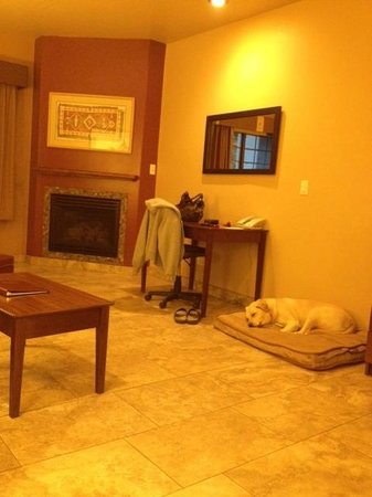 Sedona Real Inn and Suites : Pet Friendly Suite with Fireplace--of course