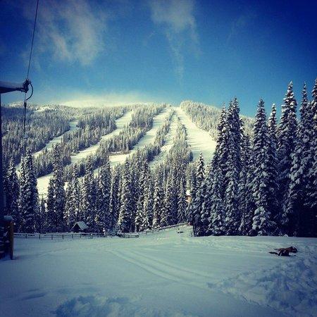 Sun Peaks Ski Area: Sun peaks