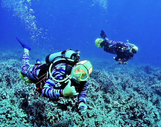 Scuba Luv Maui: Steve & Di, your hosts