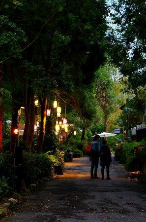Lavender Cottage: Pleasant walks...