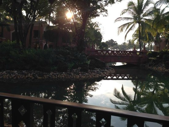 Park Hyatt Goa Resort and Spa: View