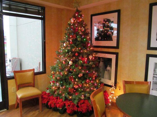 The Inn On The River: One of the Christmas Trees