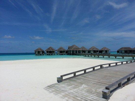 Velassaru Maldives: Maldives velassaru تصويري