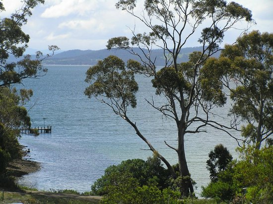 Bruny Island Explorers Cottages: the view from the living room