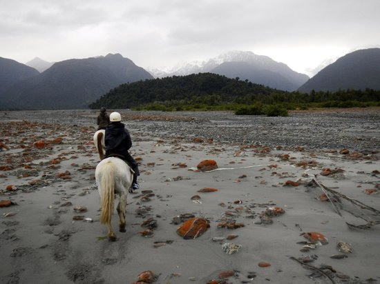 Glacier Country Horses : along the river bed