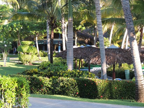 ClubHotel Riu Bachata : View of grounds