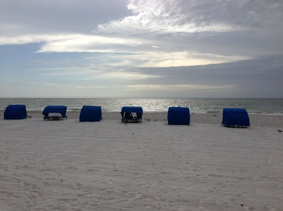 Doubletree Beach Resort by Hilton Tampa Bay / North Redington Beach: The beach is to die for