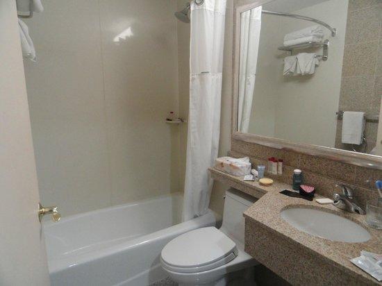 Ramada Long Island City: Baño habitación 907