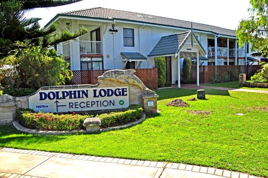 Dolphin Lodge : Private Courtyards