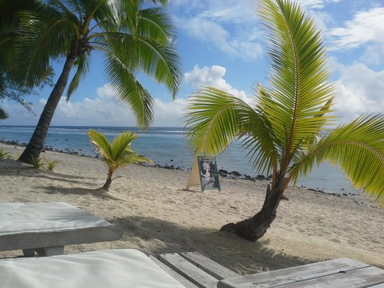 Crown Beach Resort & Spa: the reef