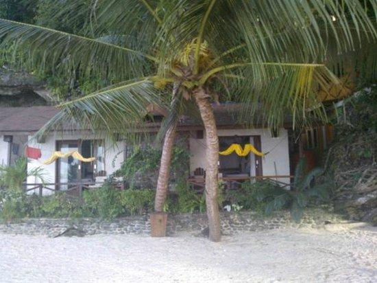 Black Marlin Dive Resort : Bungalow Outside