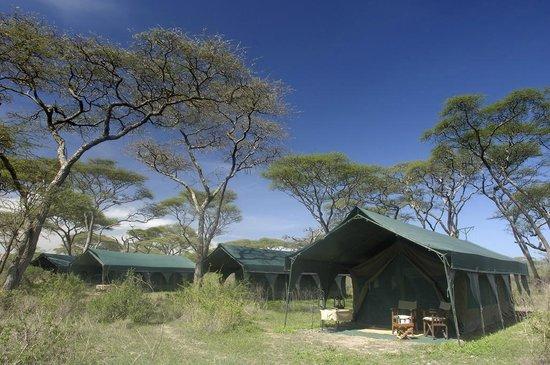 Kirurumu Serengeti North Camp: Kirurumu Serengeti Camp