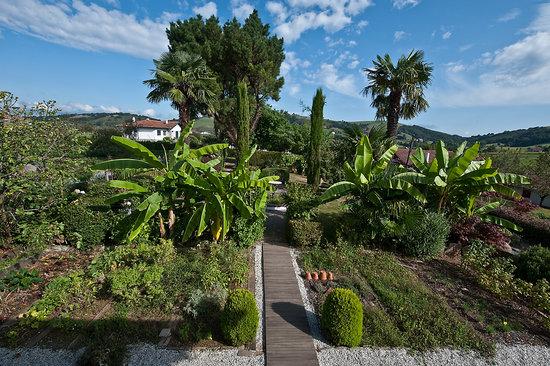 Hotel Ithurria : Le jardin