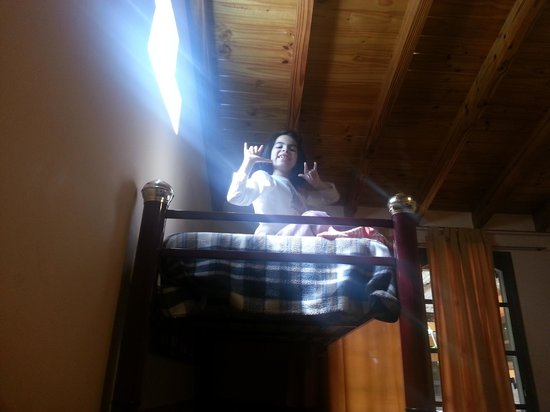 La Posada del Bermejo: en la cabaña