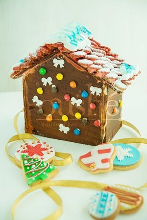 Do it yourself ginger bread house kit delicious icing tube holidays oushe gourmet bakeshop do it yourself ginger bread house kit delicious icing tube solutioingenieria Choice Image
