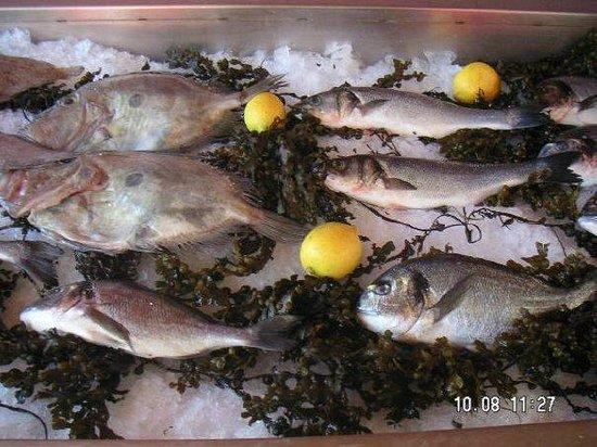 plage farniente : pêche du jour