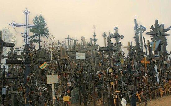 Berg der Kreuze Šiauliai: Есть и каменные плиты, на этом снимке их особенно много - прячутся среди крестов.