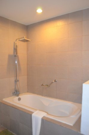 Almont Inland Resort : tub