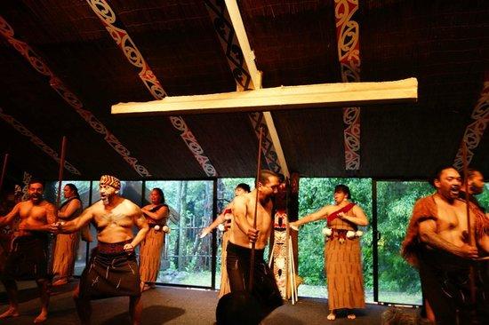 Tamaki Maori Village: entertainment