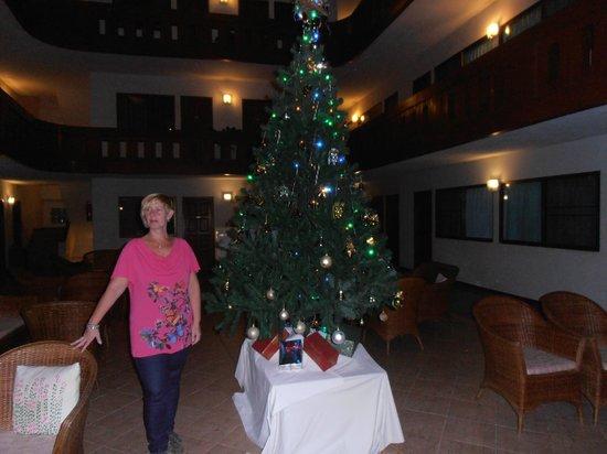 Tawan Court: christmas 2013