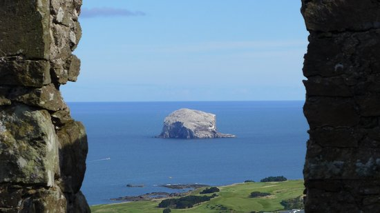 Local Eyes Tours: The Bass Rock - a 15th Century prison and now home to over 140,000 seabirds