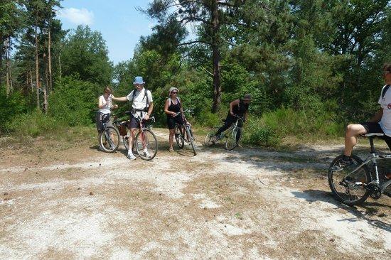 L'Oree du Bois: Chemin de randonnée ou en VTT en Sologne très apprécié en été