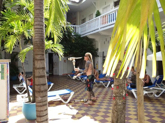 Media Luna Hostel: Comum area