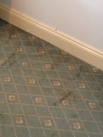 Studley Castle Hotel and Conference Centre: Keep your shoes on!