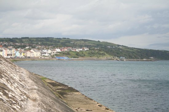 Beach Road Nature Reserve: Looking back at sunny Whitehead