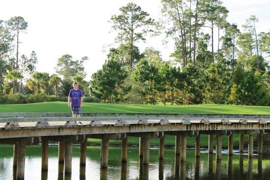Hilton Orlando Bonnet Creek: Walking path/golf course