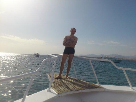 Hilton Sharm Dreams Resort : Поездка на яхте на о.Тиран
