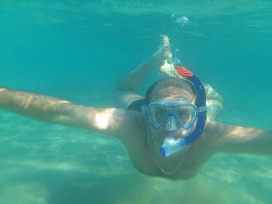 Hilton Sharm Dreams Resort : Под водой