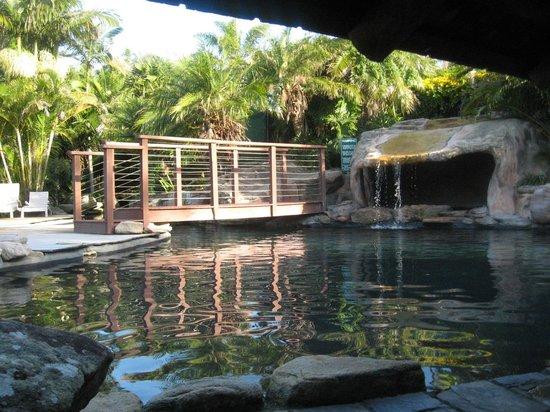 BreakFree Aanuka Beach Resort : pool area