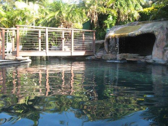 BreakFree Aanuka Beach Resort: the pool area