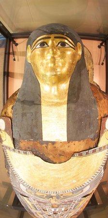 Swansea Museum: Hor the Mummy