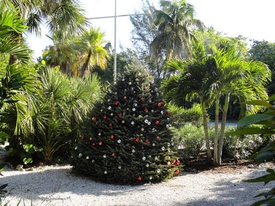 Sanibel and Captiva Chamber of Commerce and Visitors Center: getting Christmassy!!!
