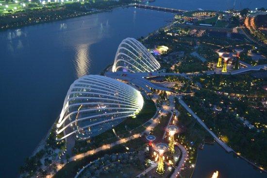 Sands Sky Park Picture Of Marina Bay Sands Skypark Singapore Tripadvisor