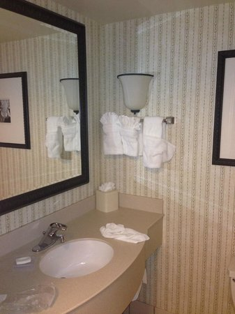 Hilton Garden Inn Addison: Bathroom